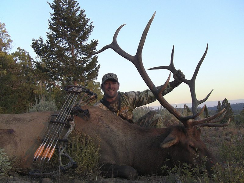 Nice Bull elk Darin Cooper rent guns and gear hunting equipment used equipment binoculars spotting scopes backpacks rifles tents sleeping bags speedgoat antelope sagebrush
